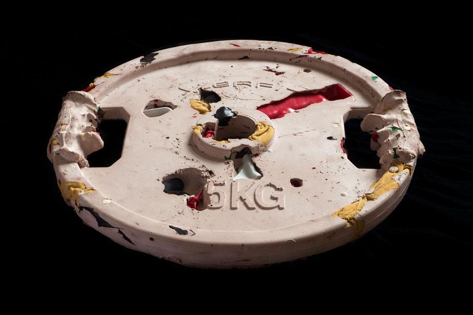 plate5_4.jpg